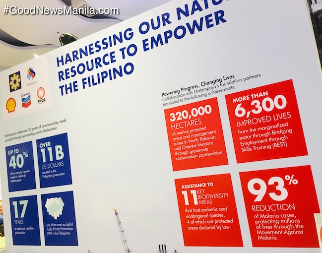 Philippine Natural Gas