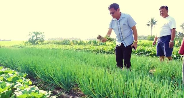 Gabutero Organic Farm