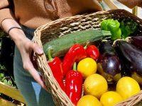 Organic Market Caravan at the Podium and SM Aura