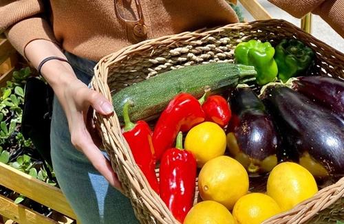 Seasonal and Organic Produce at the Farmers Produce at SM Supermalls