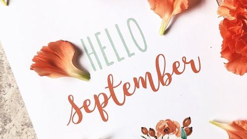 September Sale on Shopee